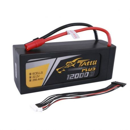Tattu Plus 6S 12000mAh 15C